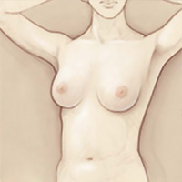 Self breast-examination steps